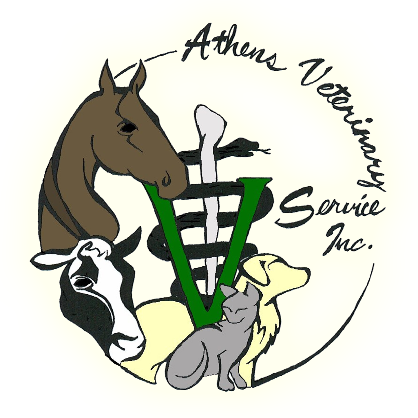 Clipart cow vet. Athens veterinary service inc