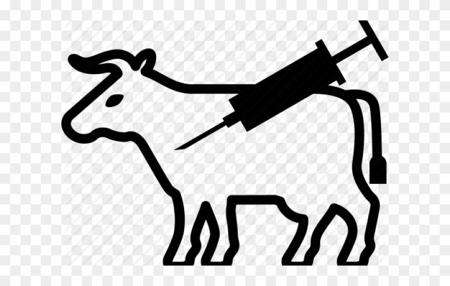Cow clipart vet. Veterinarian png transparent
