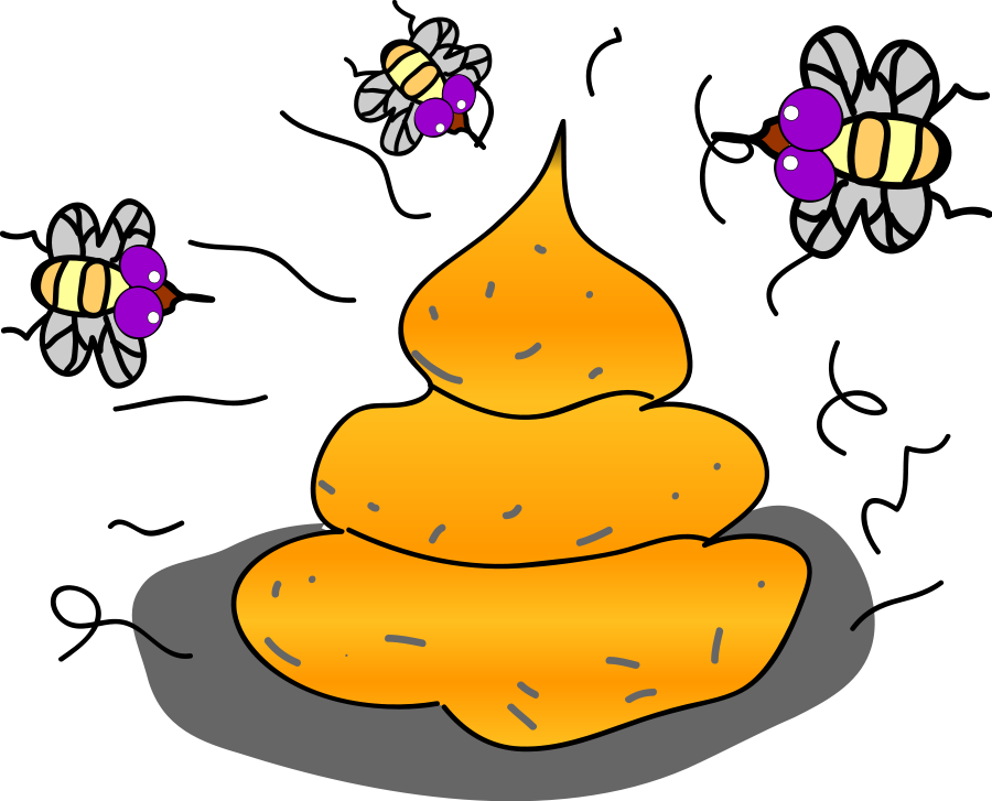 Collection of free excreta. Fly clipart filthy
