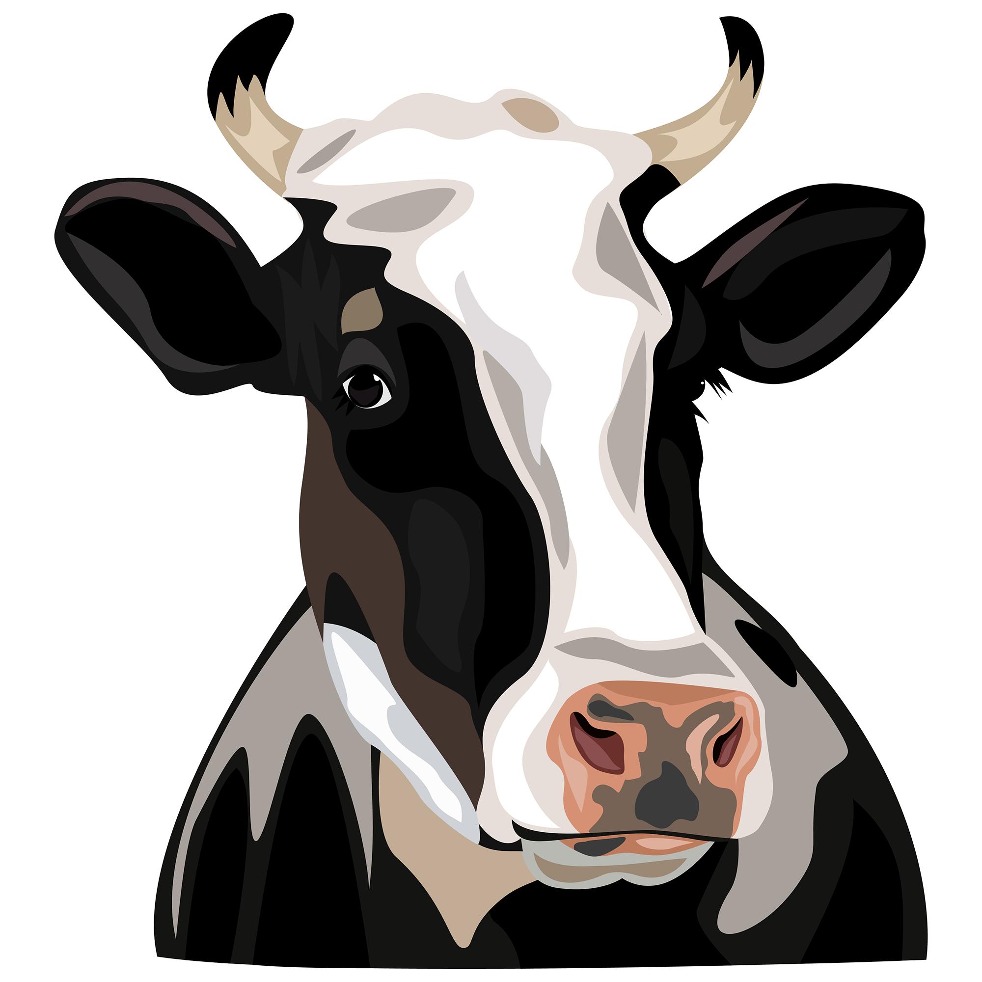 Holstein friesian cattle clip. Cows clipart home