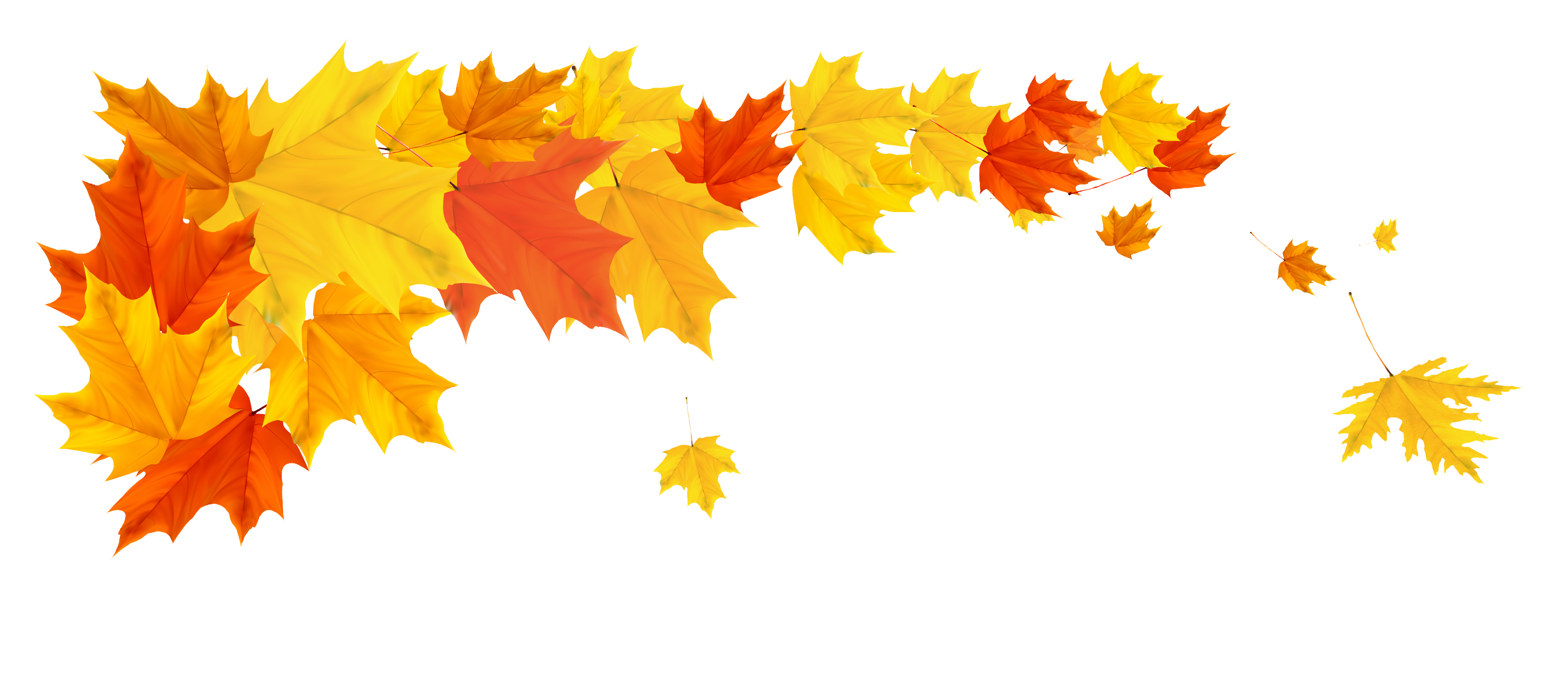 Outdoors clipart cute fall leaves. Orange leafs png picture