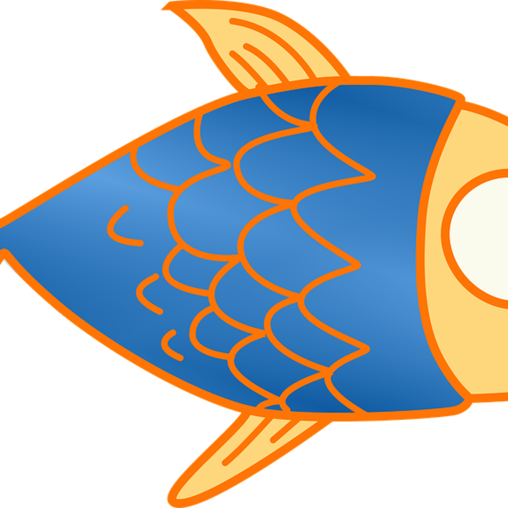 Trout clipart pink salmon. Fish tank at getdrawings