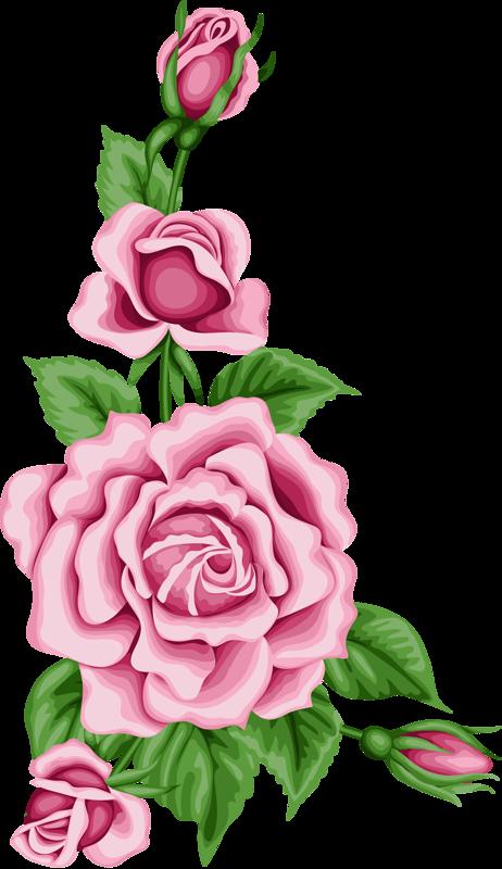Vintage flower card with. Clipart rose doodle