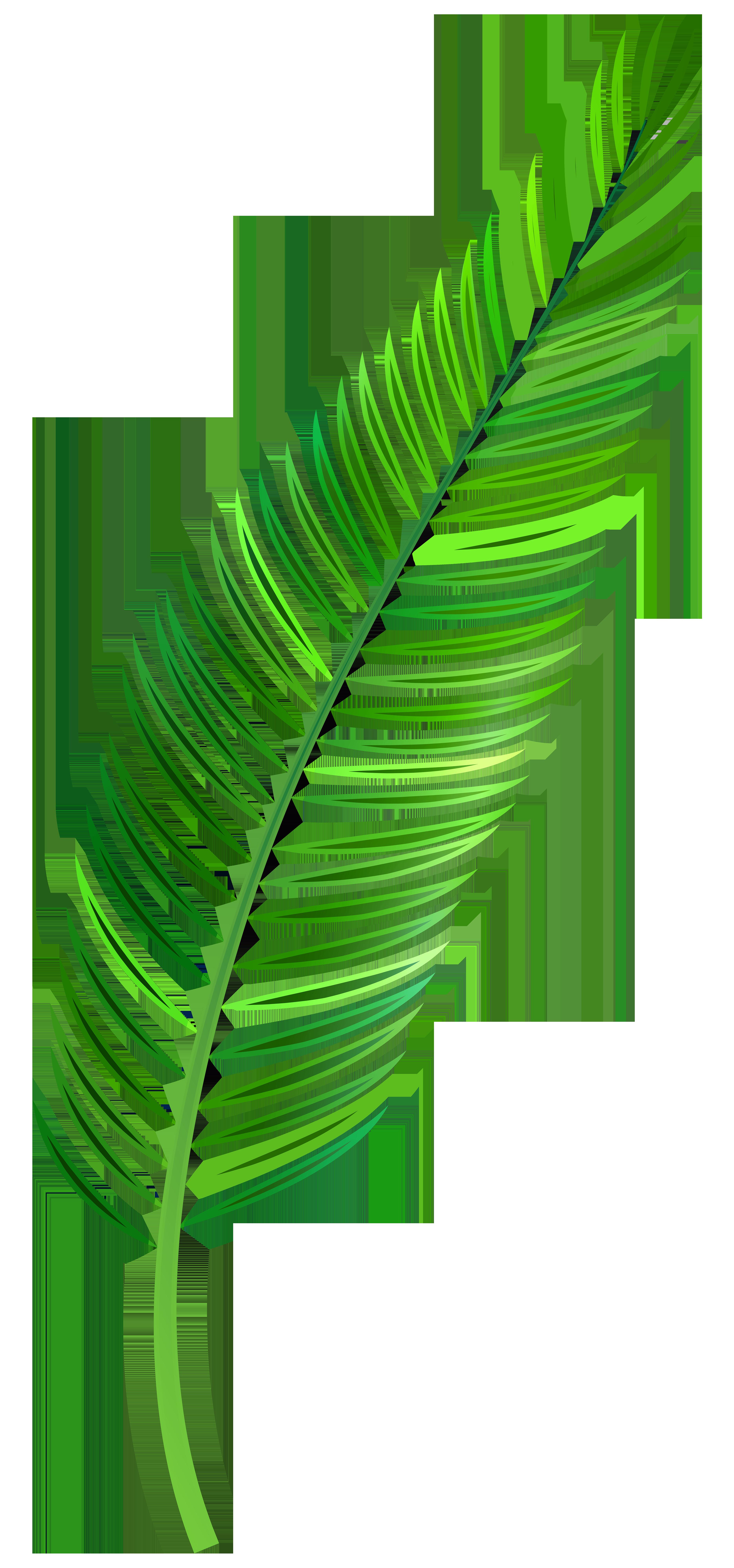 Leaf png clip art. Palm clipart watercolor