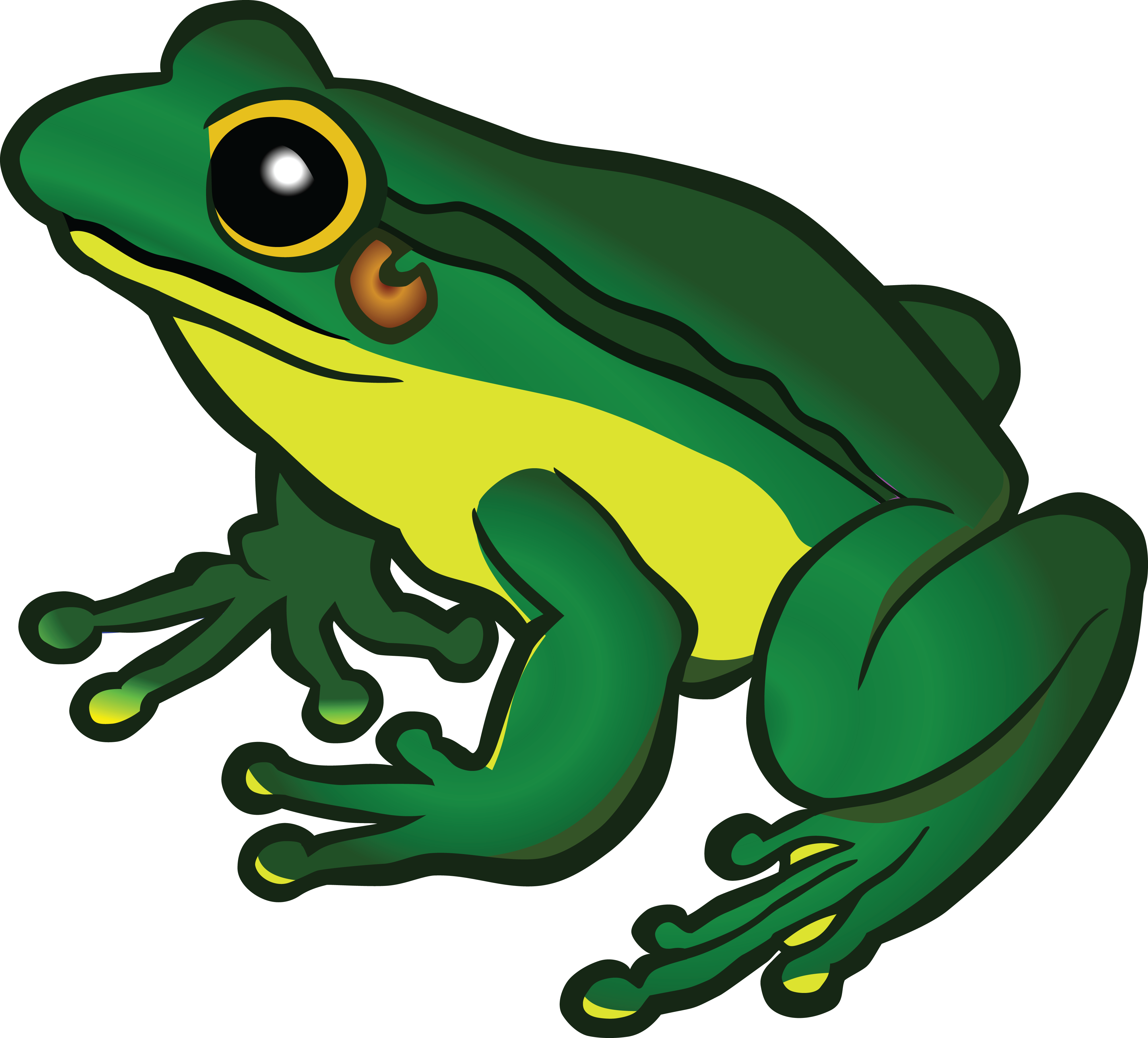 Home clipart frog. Free of a pinterest