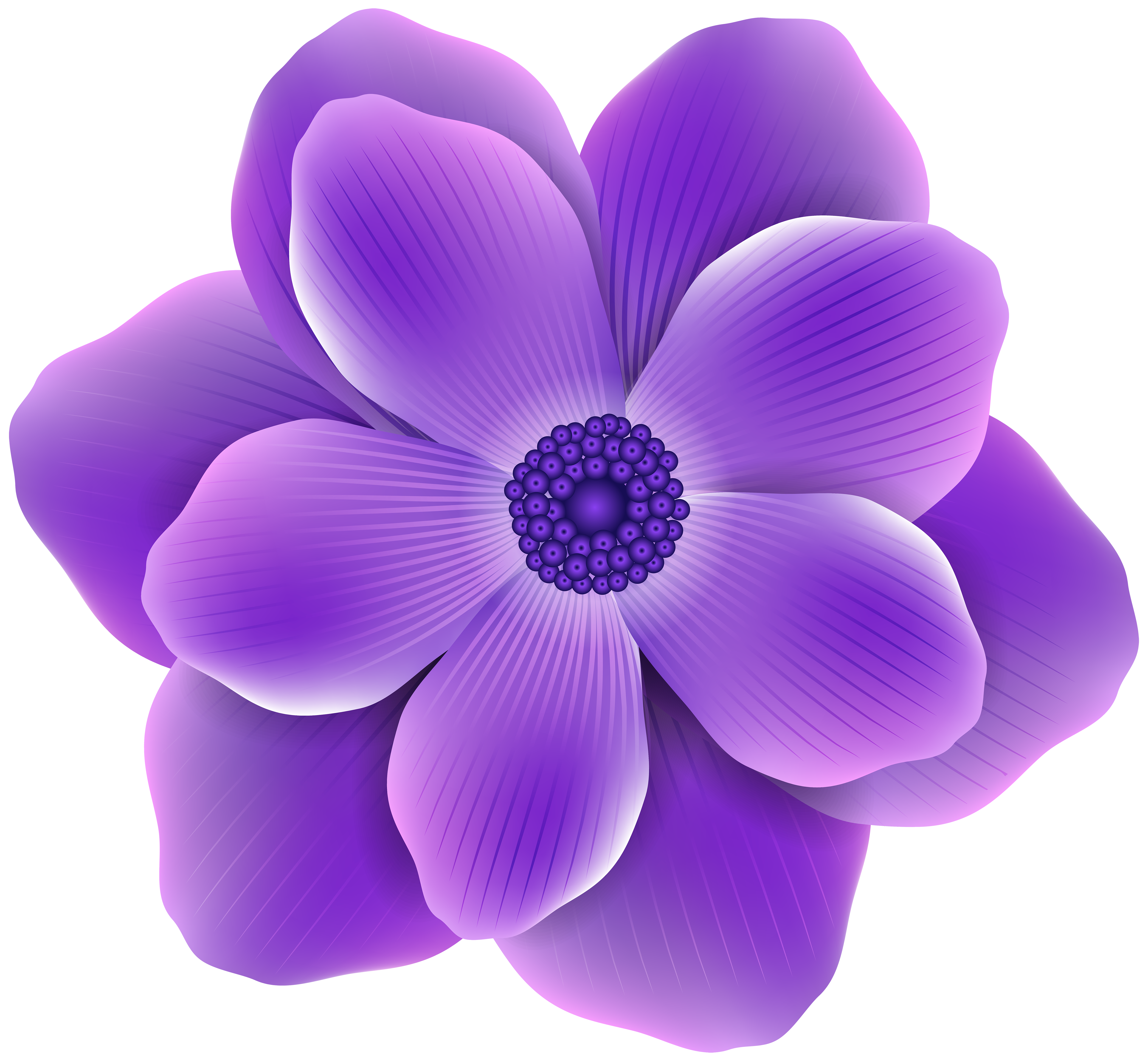 Hydrangea clipart high resolution. Purple flower png clip