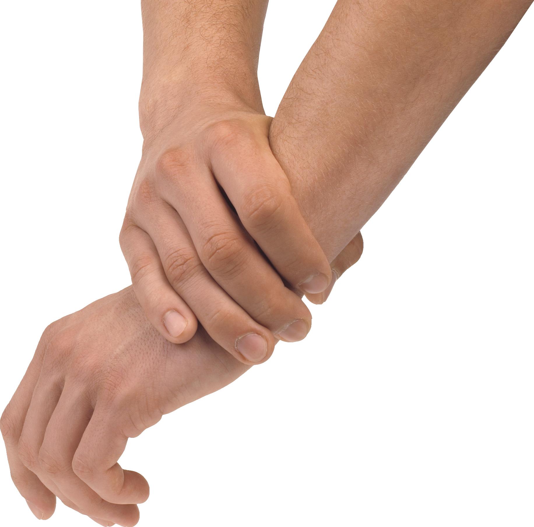 Hand clipart forearm. Hands eighty four isolated