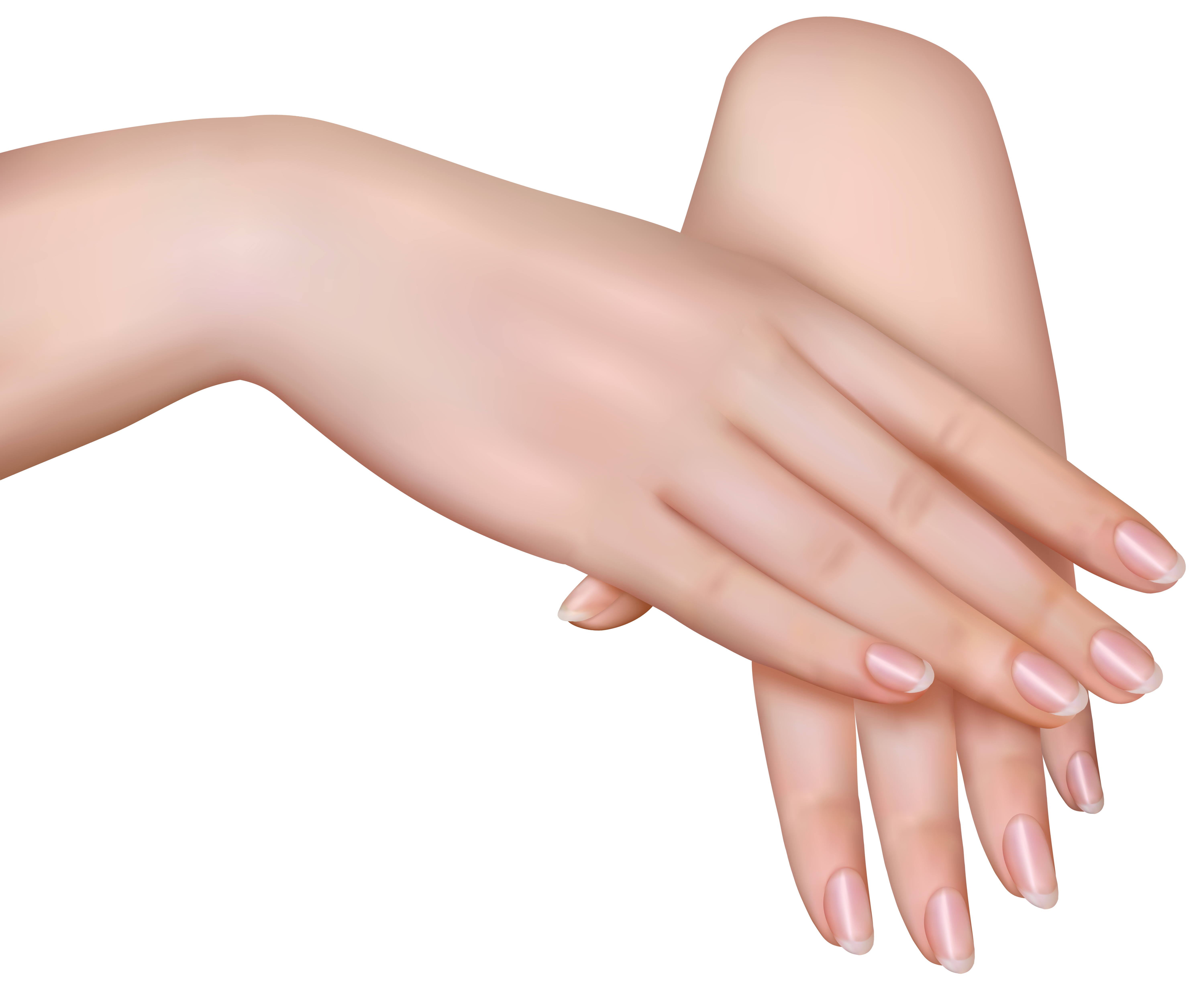 Nails clipart finger nail. Hand clip art female