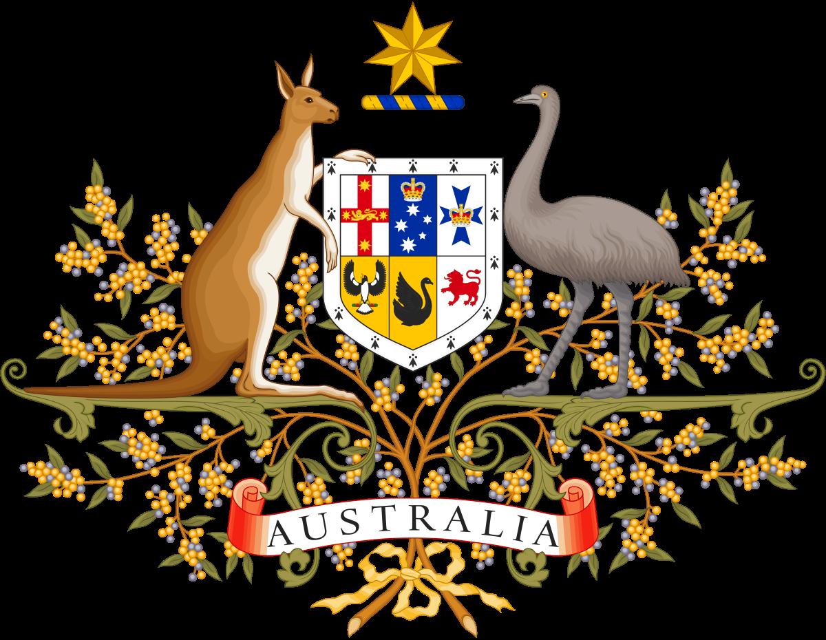 Politics of wikipedia . Kangaroo clipart person australia