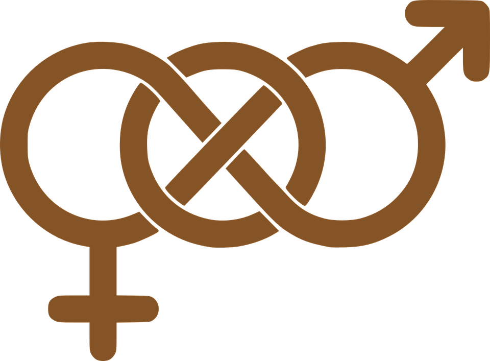Philosophical percolations feminism gender. Clipart definition female reproductive system