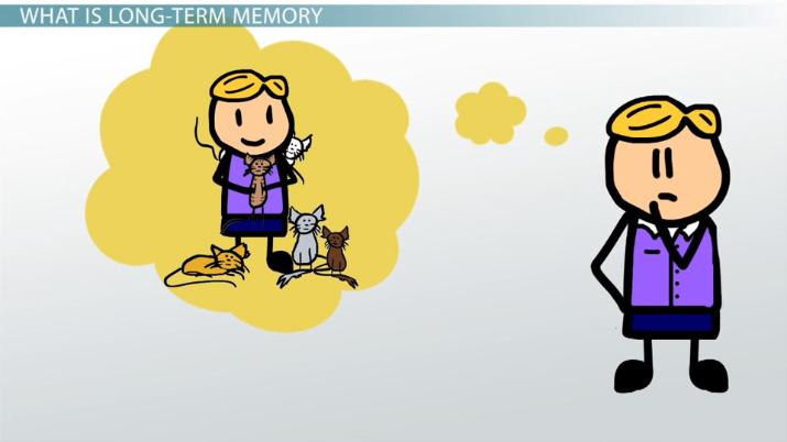 Long term memory definition. Memories clipart person