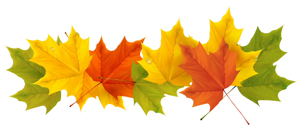 Clipart definition transparent. Fall leaves png picture