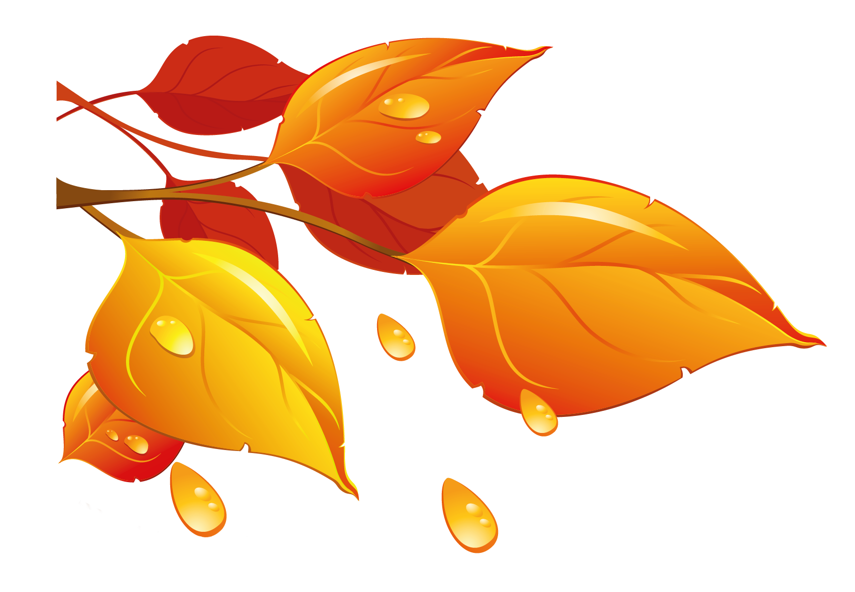 Clipart fall here. Transparent autumn leaves png