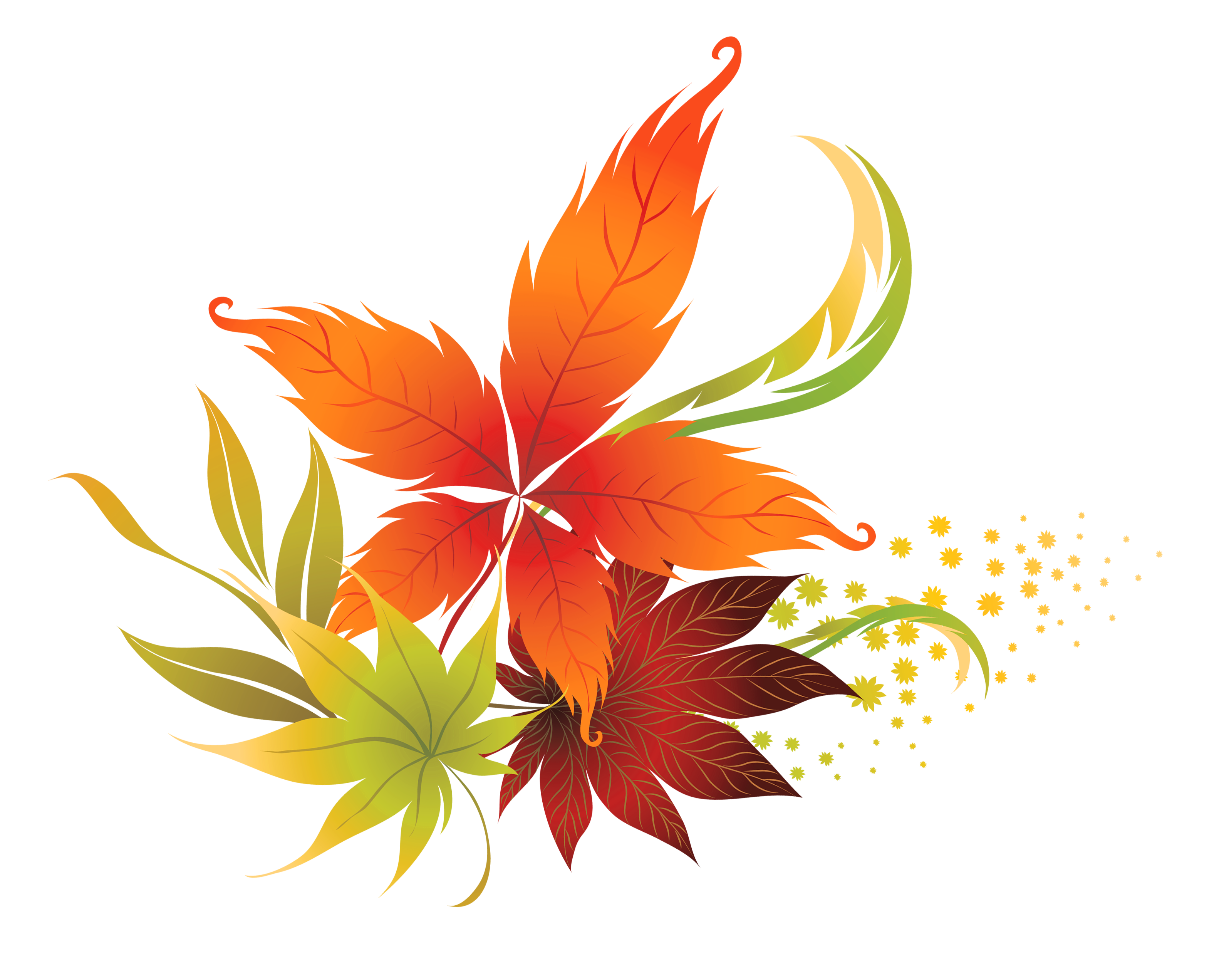 Autumn leaf color clip. Fall flower png