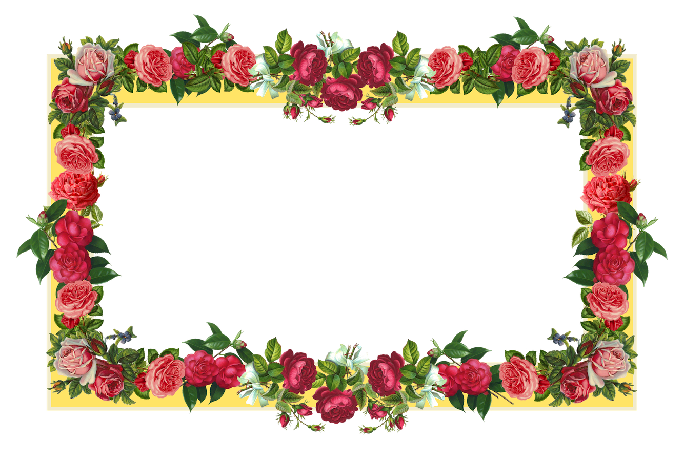 Free flowers design download. Border designs png