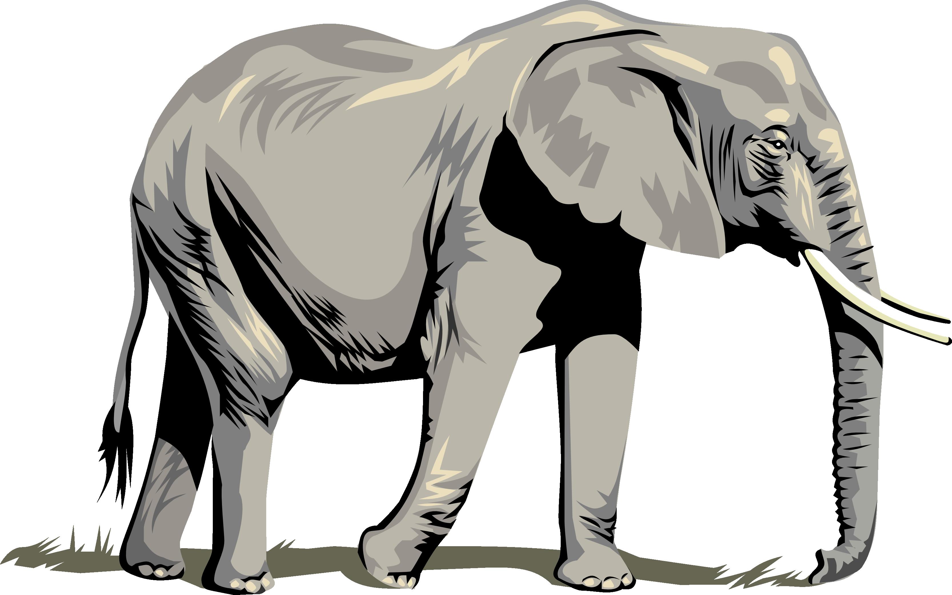 Horn clipart elephant. Head at getdrawings com