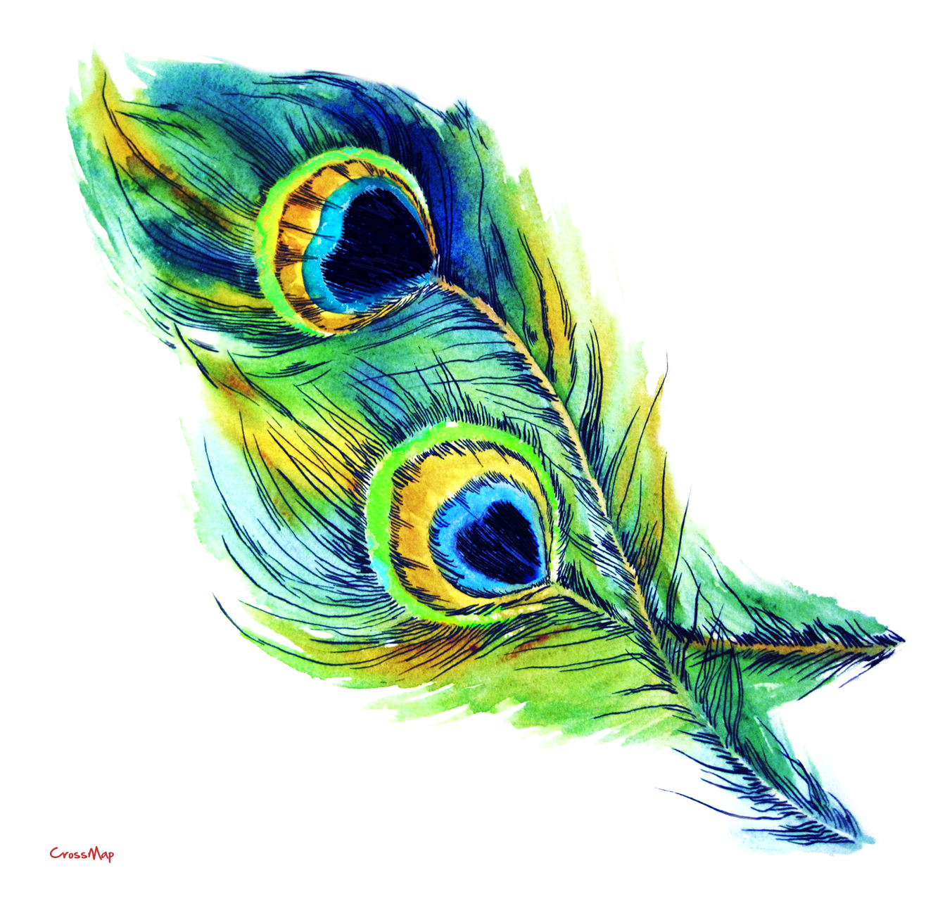 Eye christian clip art. Feather clipart colorful feather