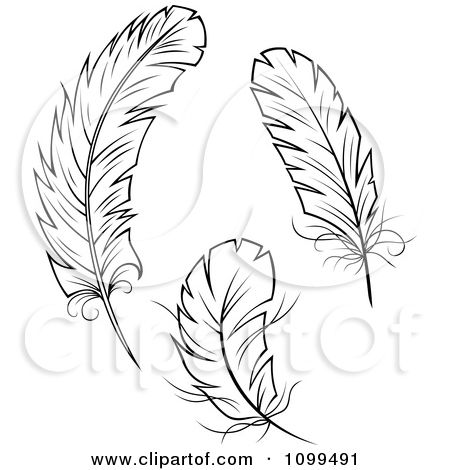Tattoo designs black and. Feather clipart three