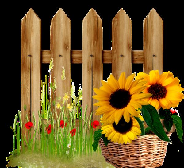 Gardening clipart tall sunflower. Fence garden pinterest fences