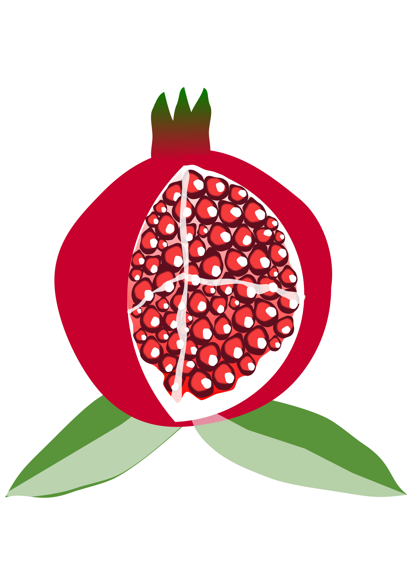 Pomegranate big image png. Scale clipart fruit