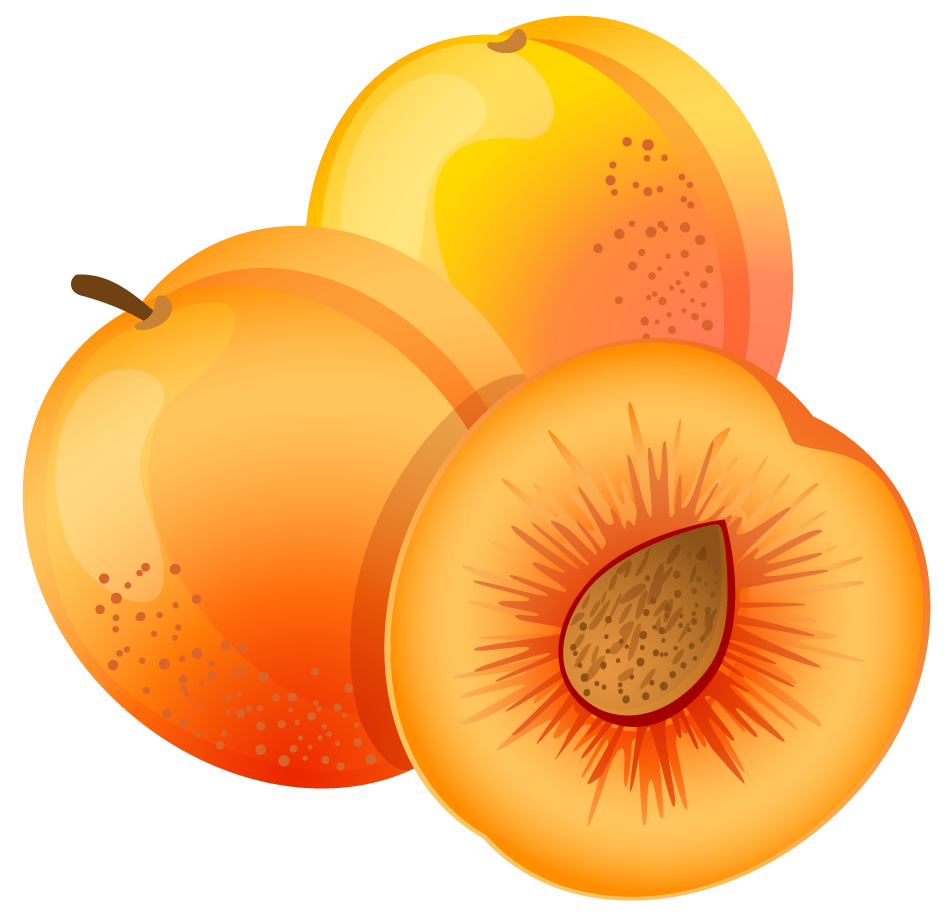 Jelly clipart large. Painted apricot png fruit