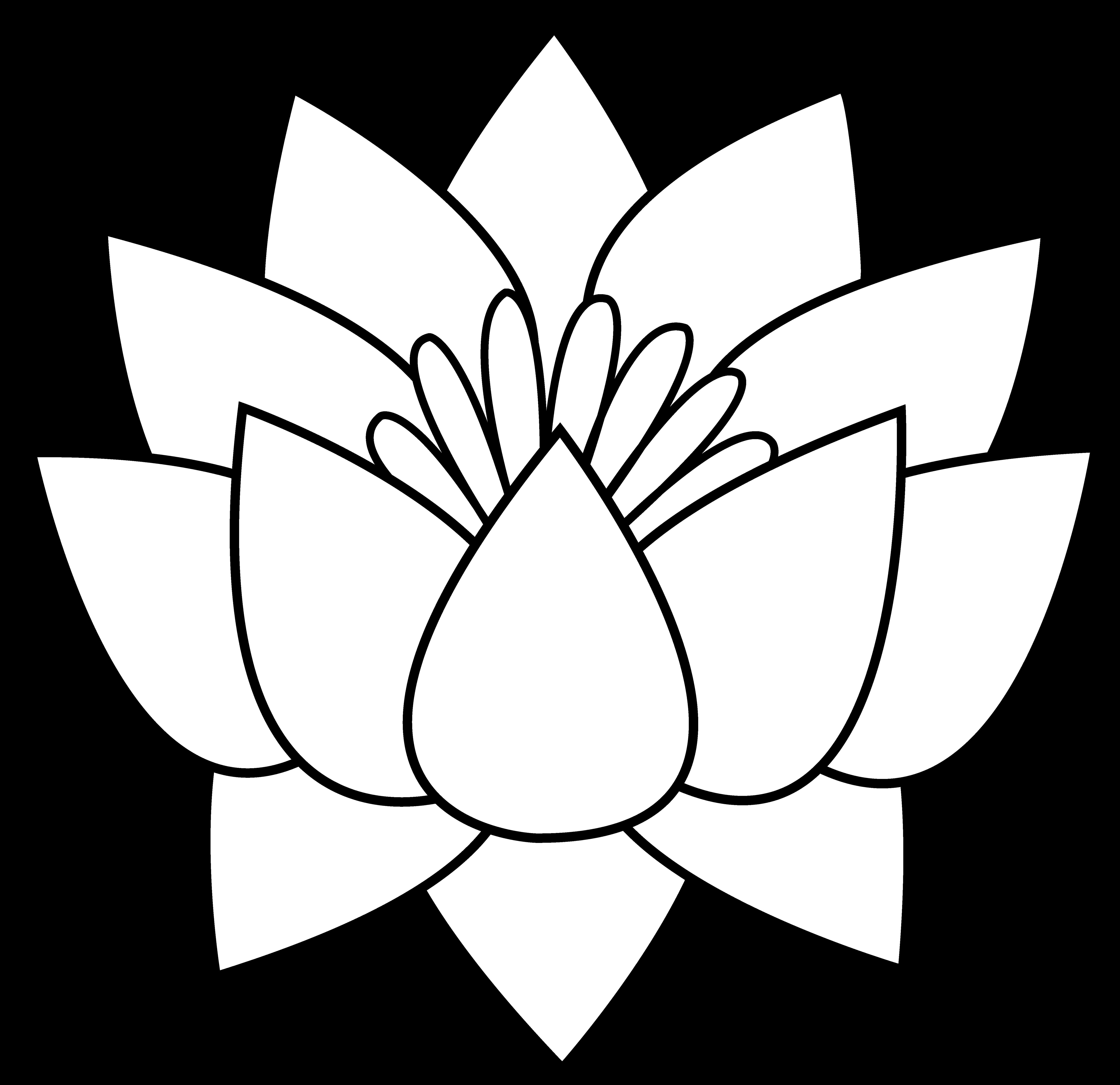 Design lotus