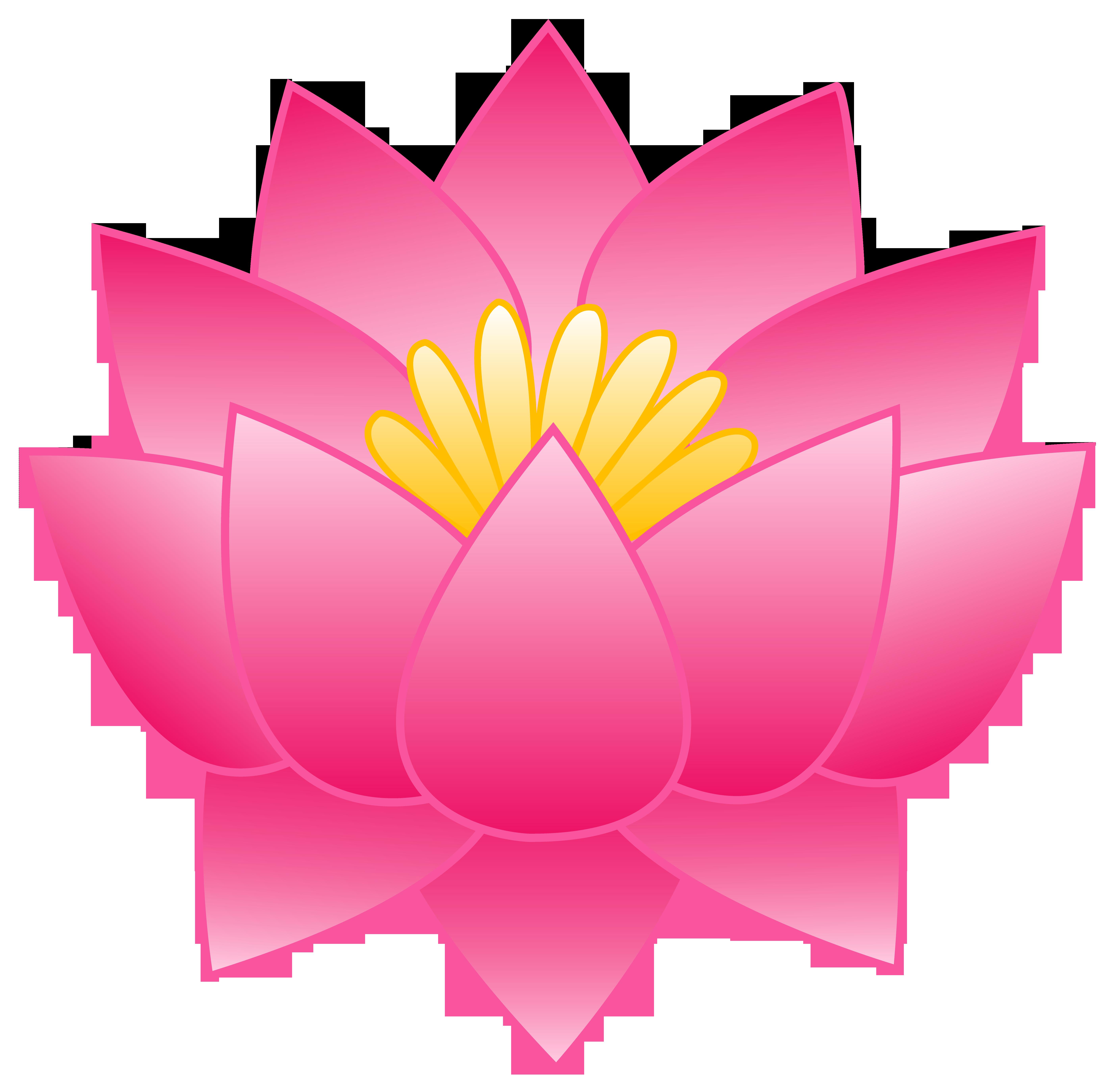 Flower pink lotus