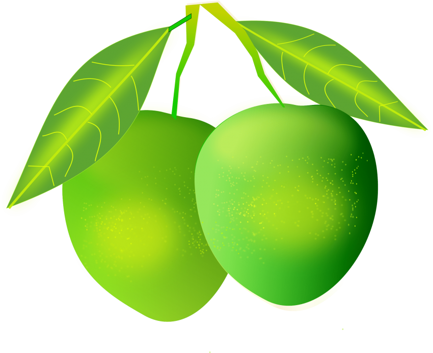 Mango clipart transparent background. Png free images toppng