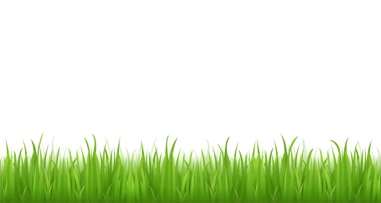 Clipart grass scenery. Picture for bottom design