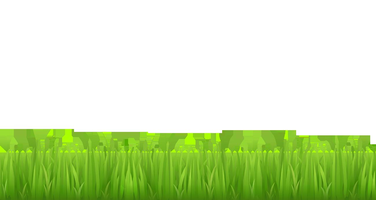 Picture clipart grass. For bottom design clip