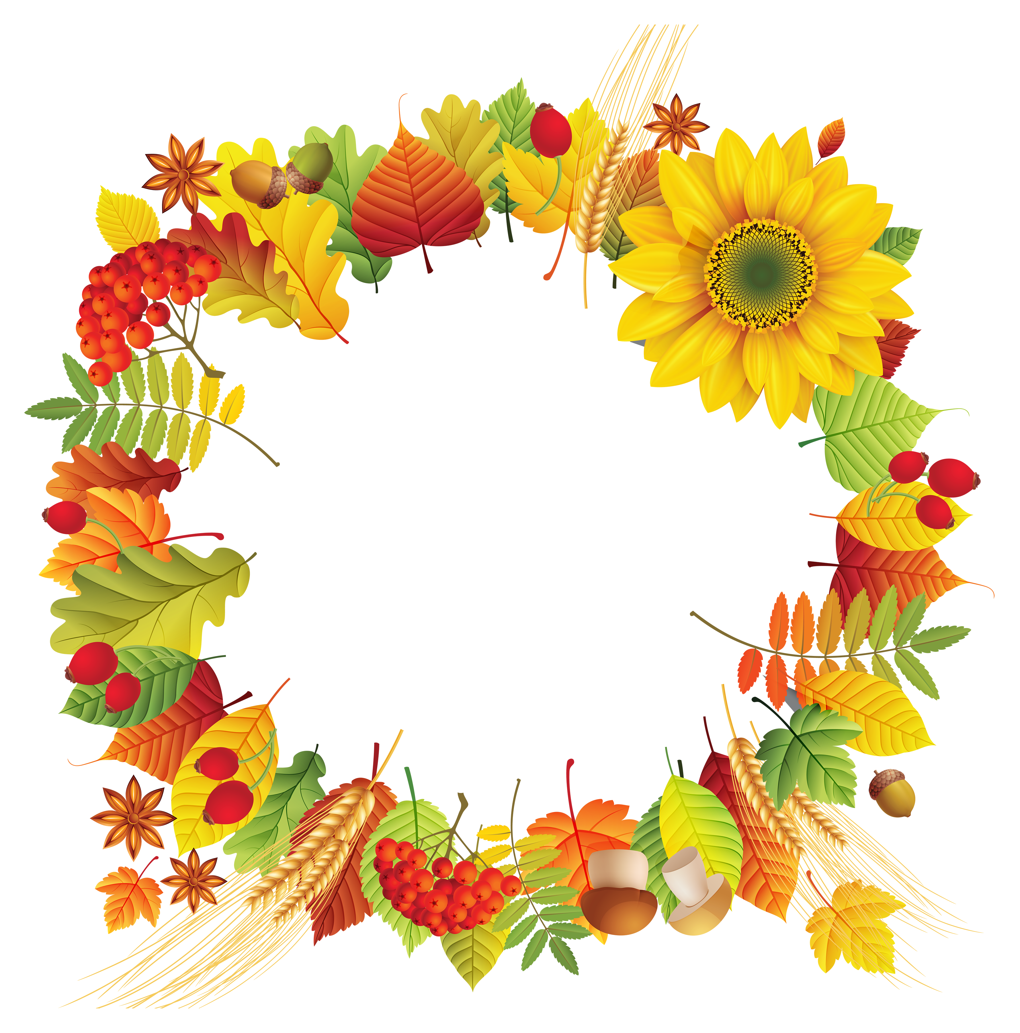 Oval leaves decoration png. Clipart fall floral