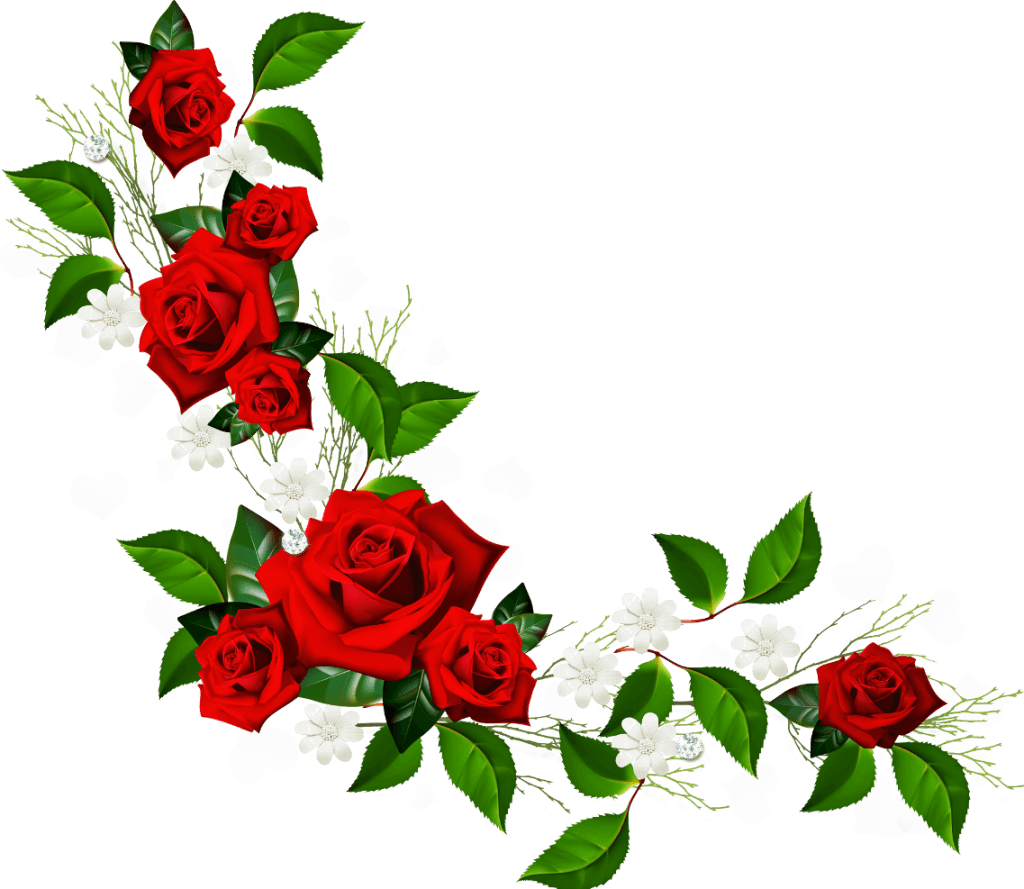 Rose with stem drawing. Clipart roses curved