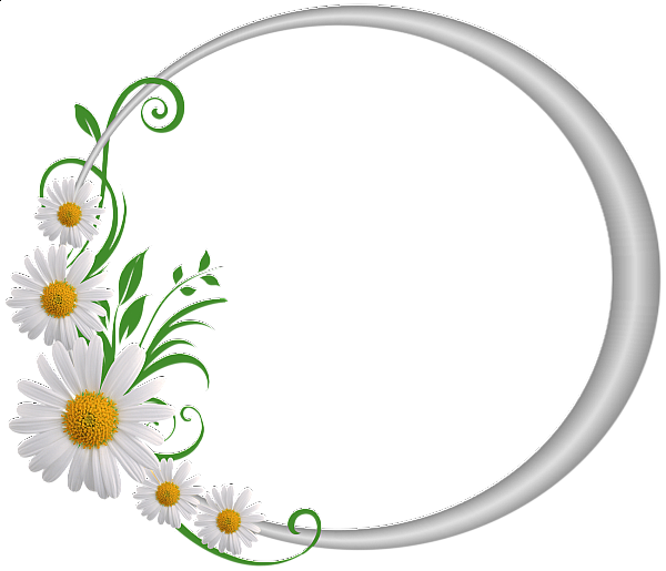 Round frame with daisies. Clipart design silver