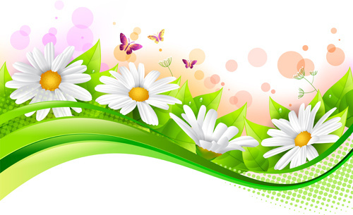 Daisies clipart banner. Branch spring flowers birds
