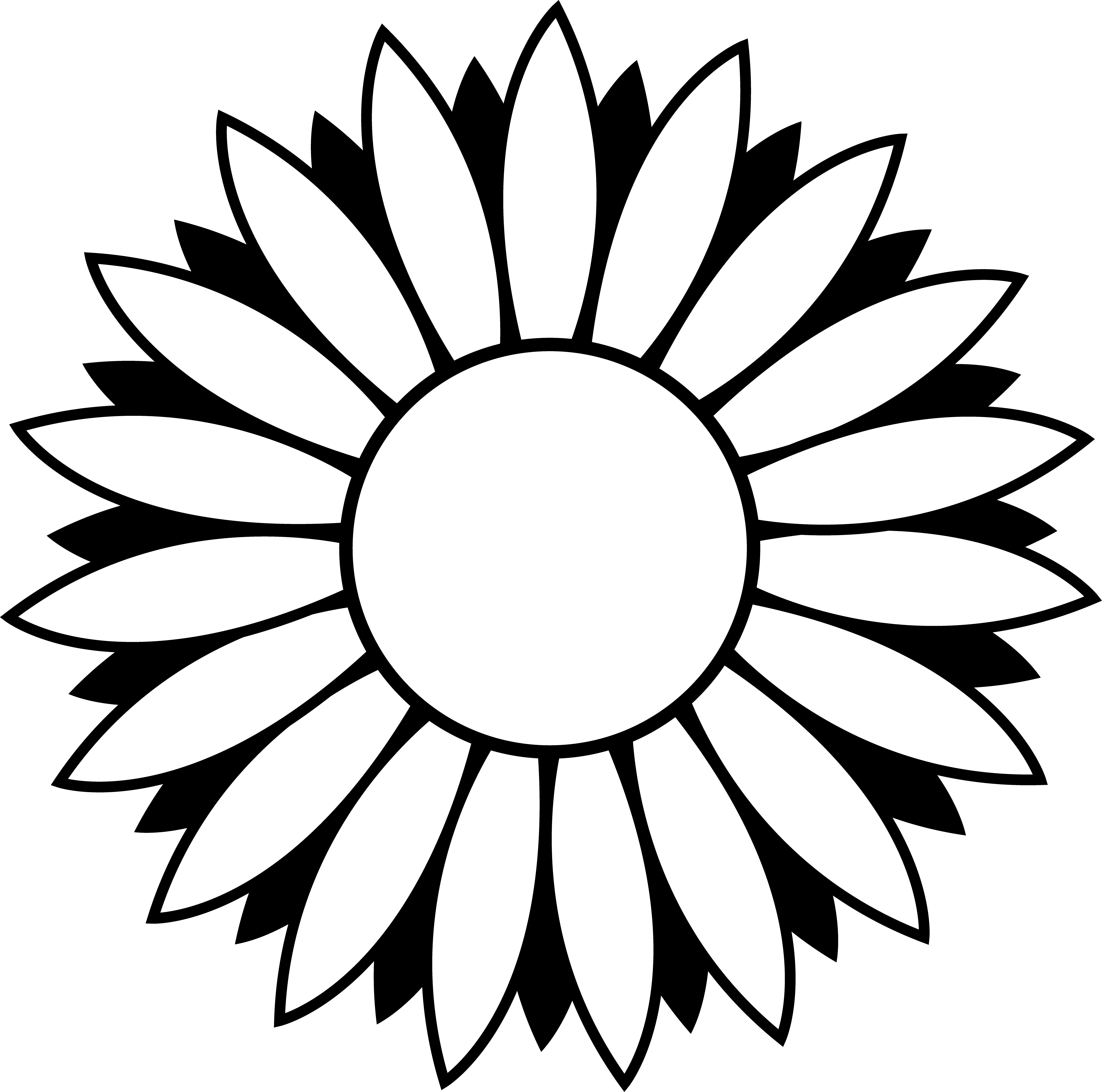 Black and colorable free. White clipart sunflower