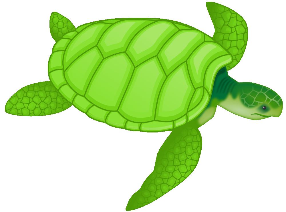 Onlinelabels clip art green. Lake clipart sea