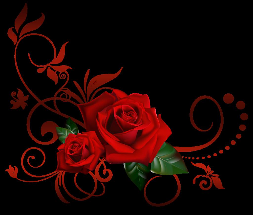 Rose Vine PNG HD Transparent Rose Vine HD