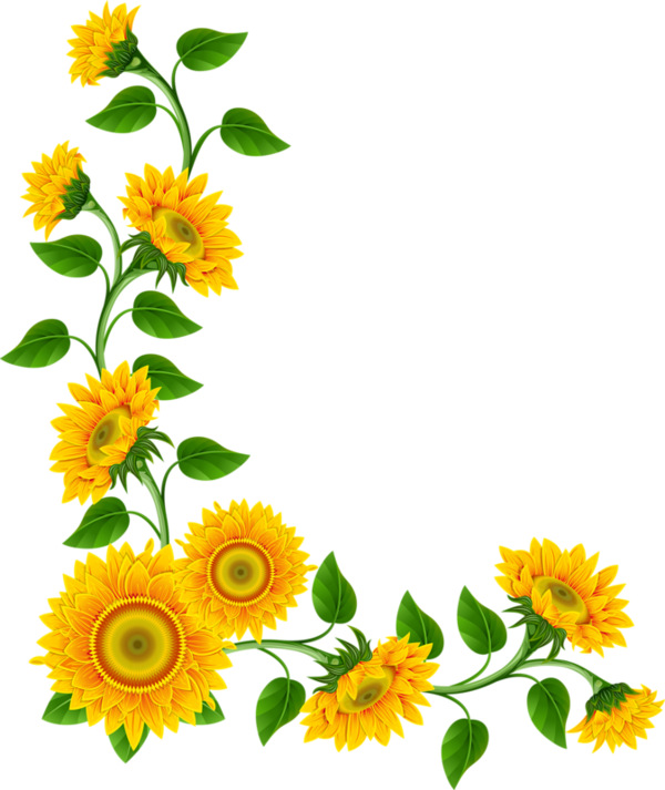 Fence clipart sunflower. Bordures coins tubes pinterest