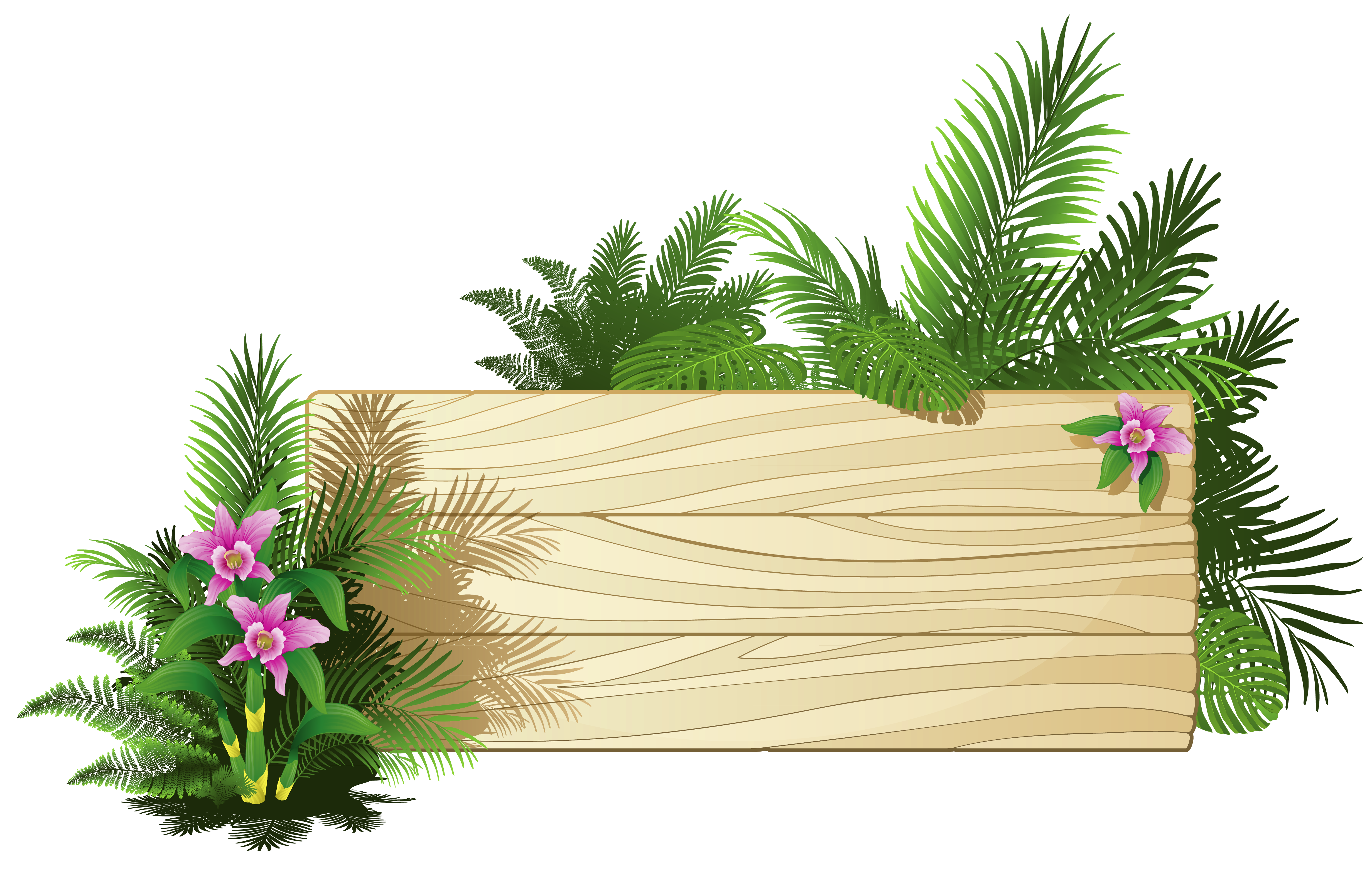 Frame clipart forest. Exotic board png labely