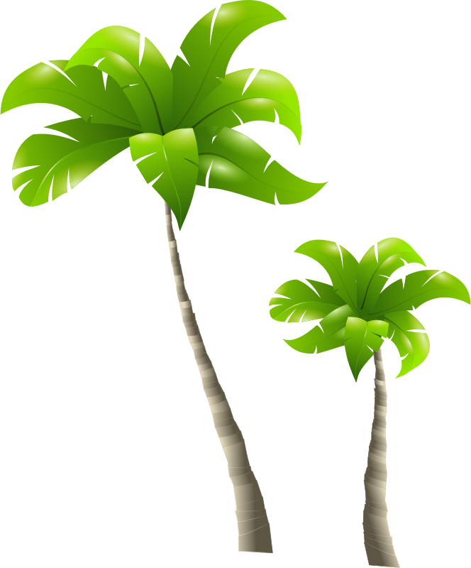 Clipart designs nature. Image for palm trees