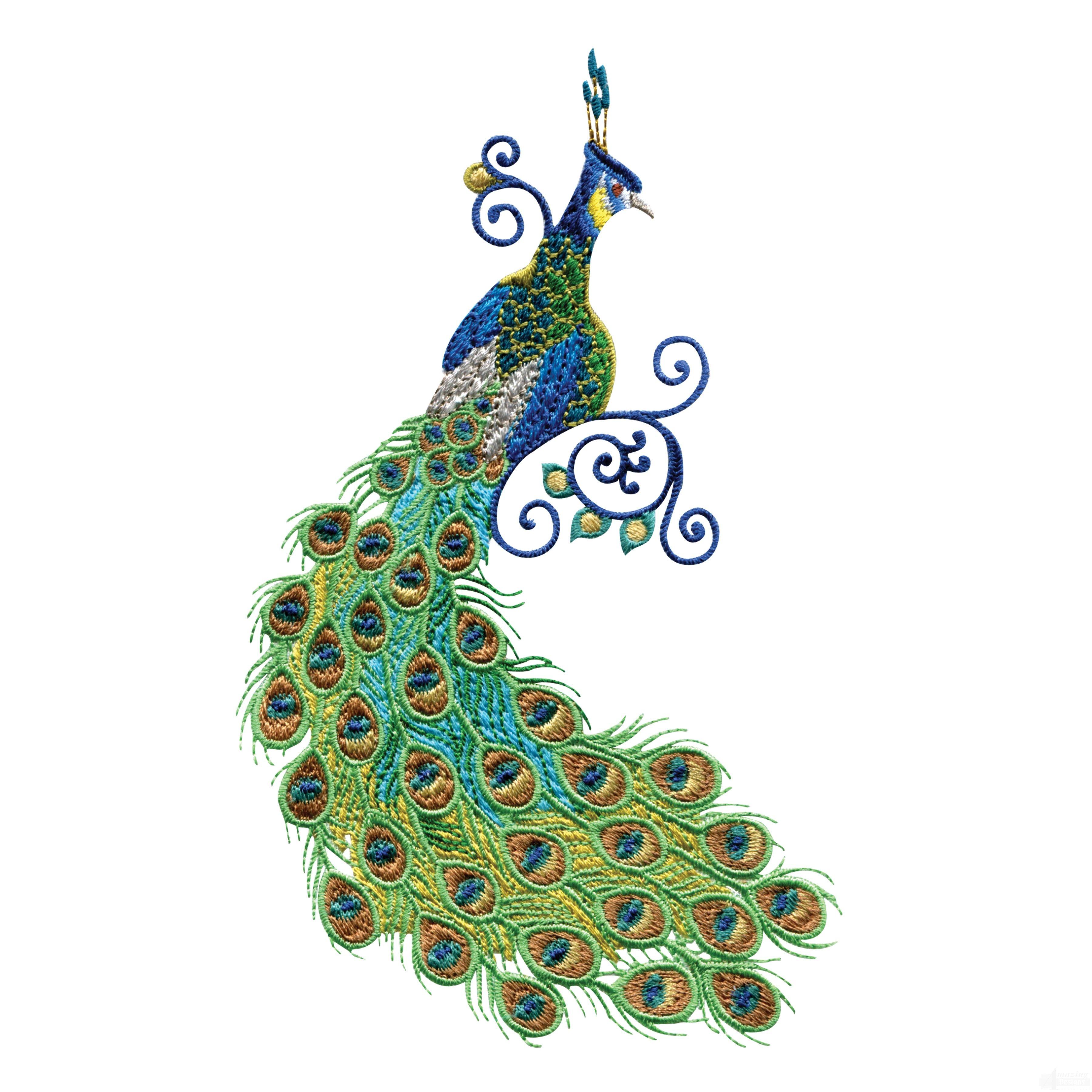 Swnpa embroidery panda free. Clipart designs peacock