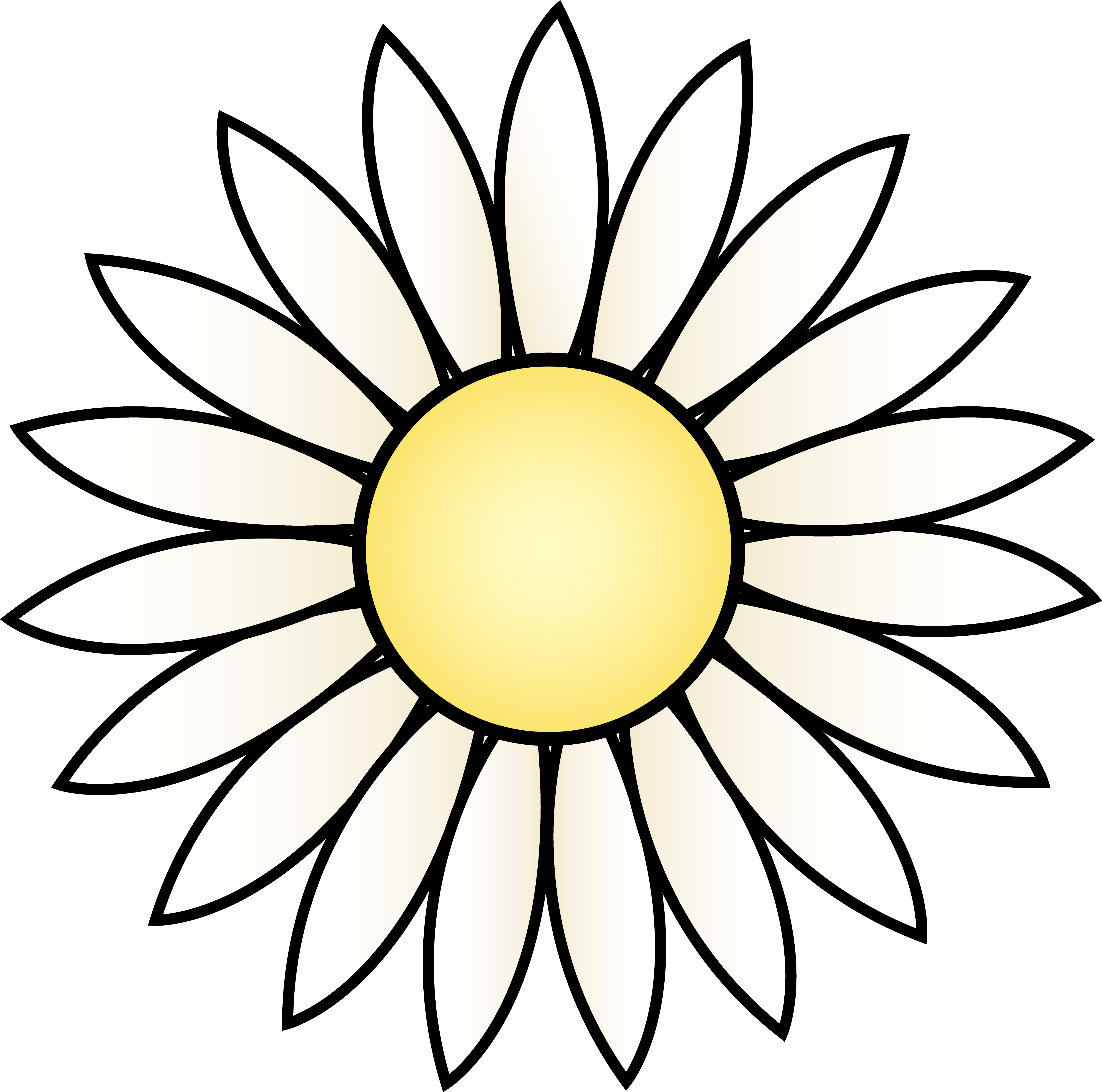 Drawing template at getdrawings. White clipart sunflower
