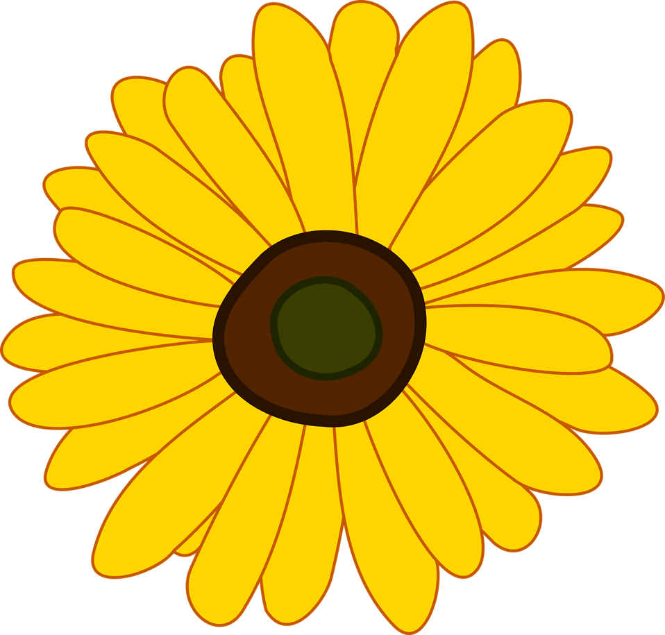 White clipart sunflower. Free stock photo illustration