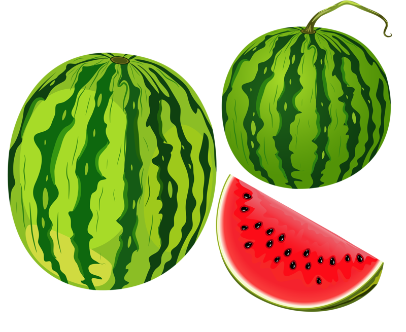 Watermelon clipart strawberry. Shutterstock png pinterest clip
