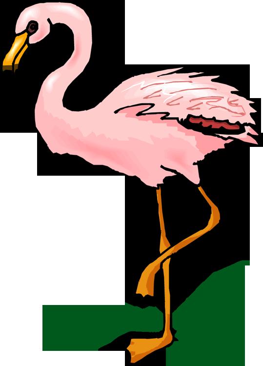 Wings at getdrawings com. Clipart dinosaur bird