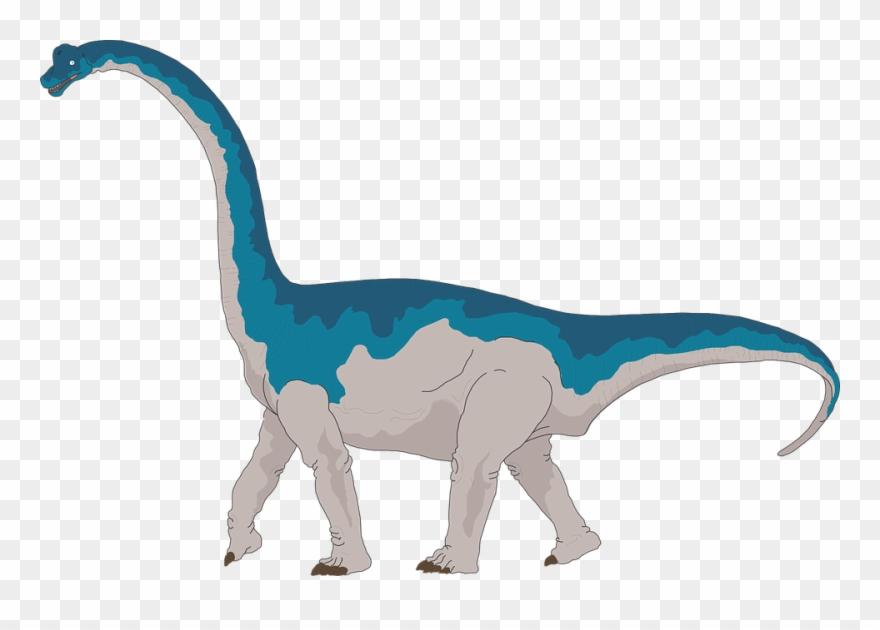 Collection of tail cliparts. Clipart dinosaur brachiosaurus