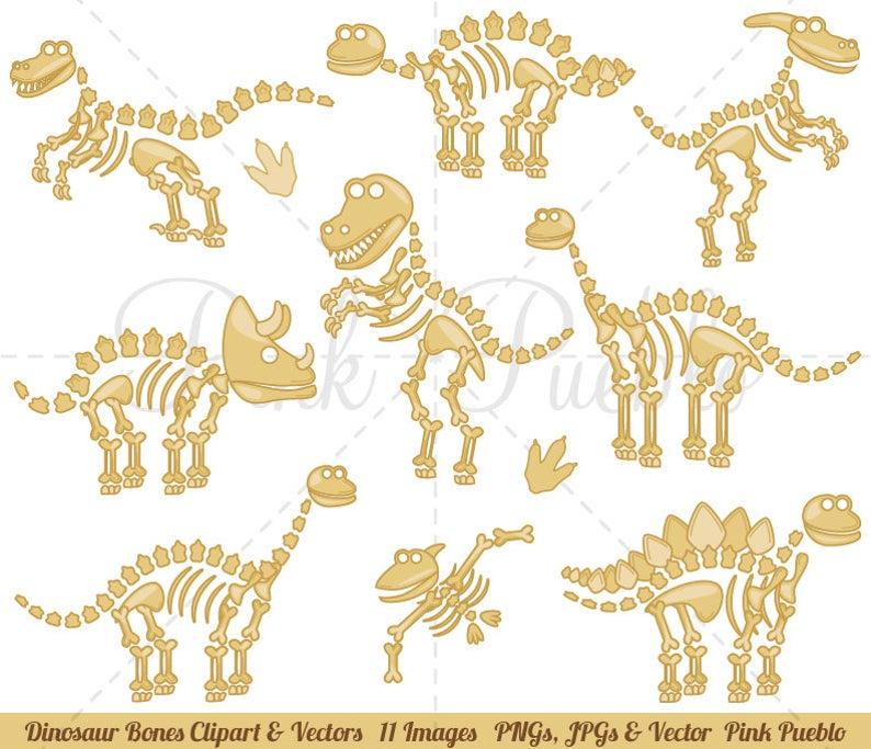Dinosaur clipart dinosaur bone. Bones clip art fossils