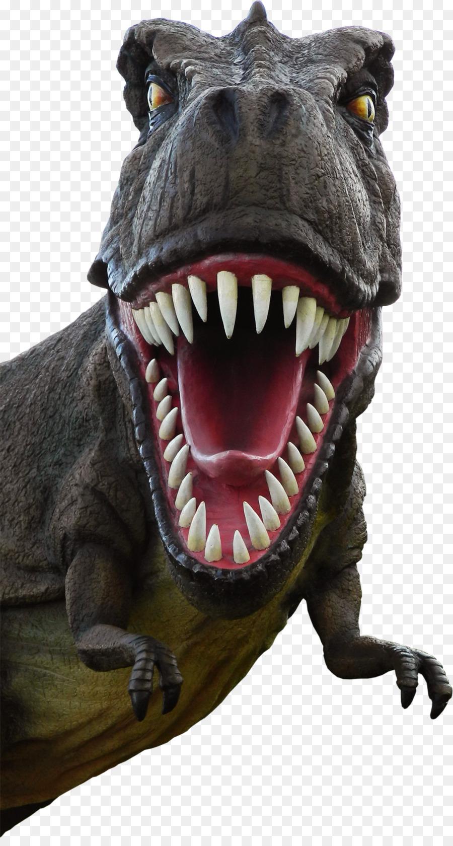 Tooth cartoon transparent . Clipart dinosaur mouth