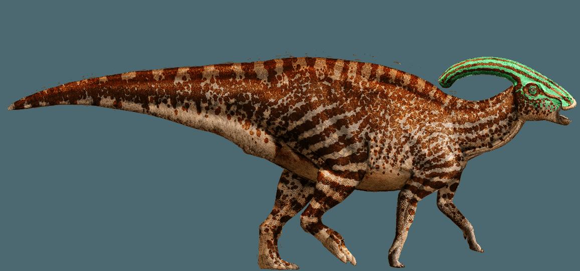 Clipart dinosaur parasaurolophus. Wiki fandom powered by