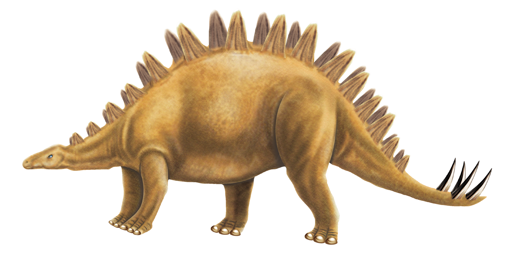 Images of free pictures. Clipart dinosaur printable